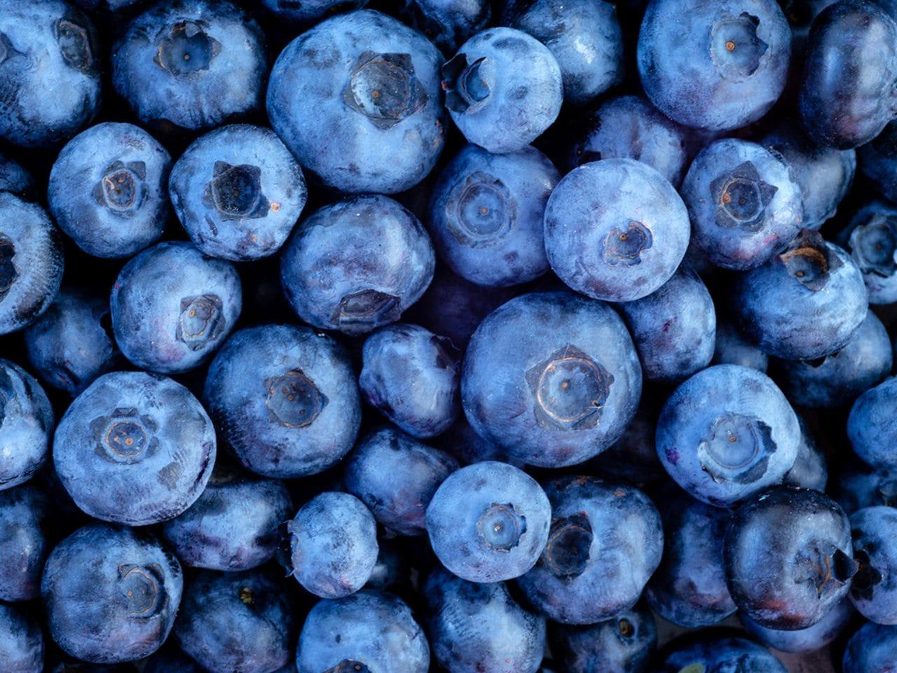 Kiril Mischeff Product Blueberry