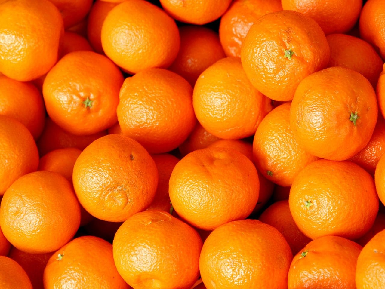 Kiril Mischeff Product Clementine