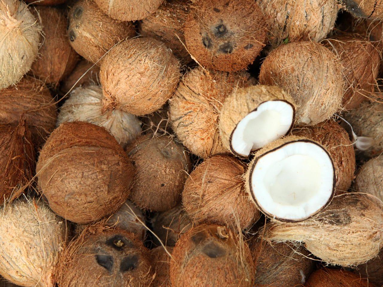 Kiril Mischeff Product Coconut