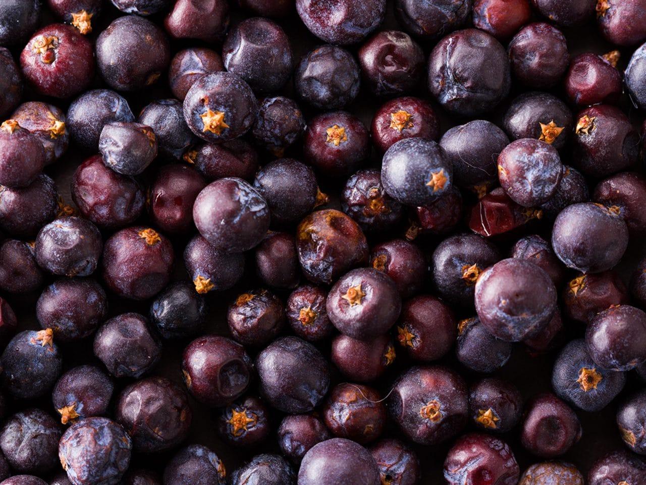 Kiril Mischeff Product Elderberry