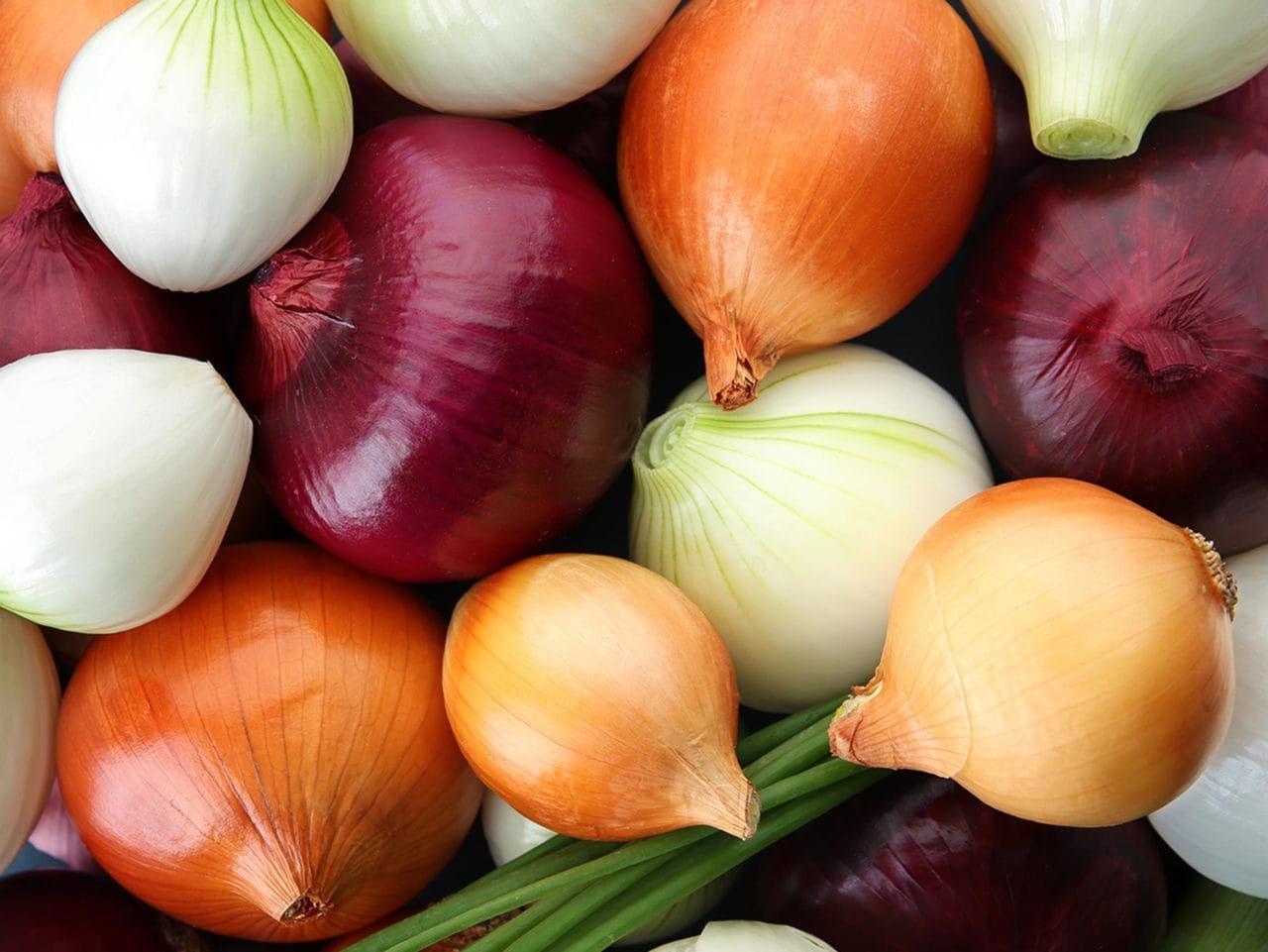 Kiril Mischeff Product Onion