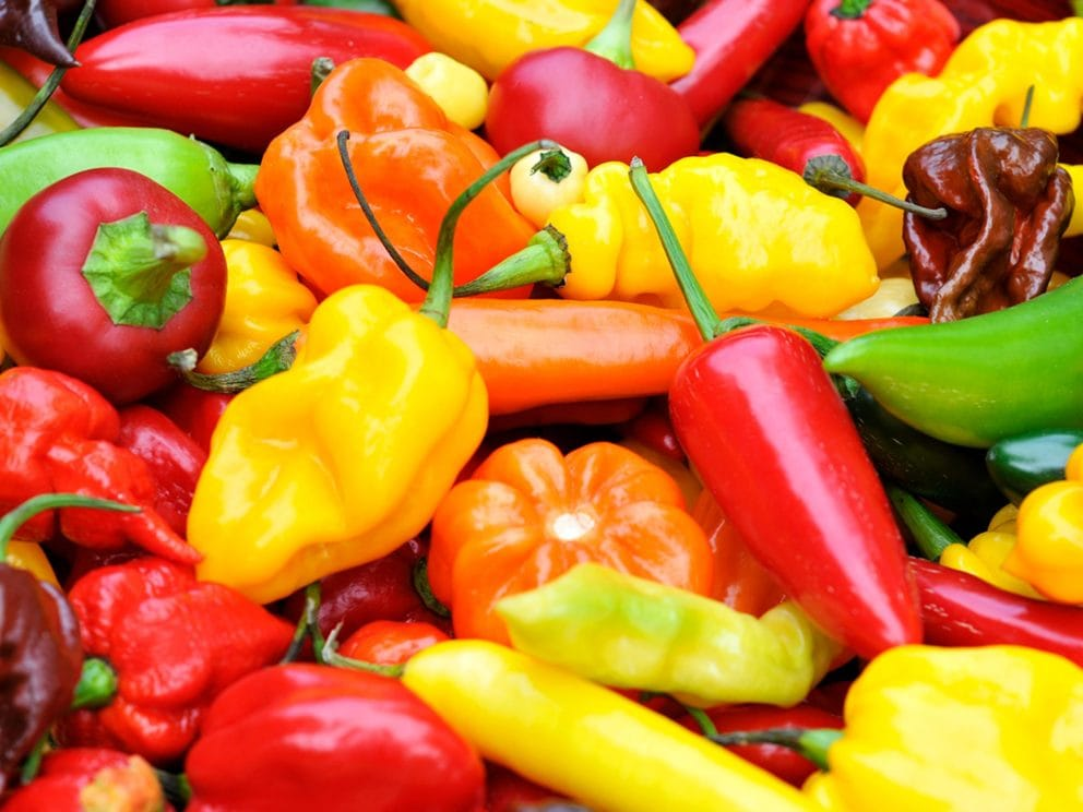 Kiril Mischeff Product Peppers