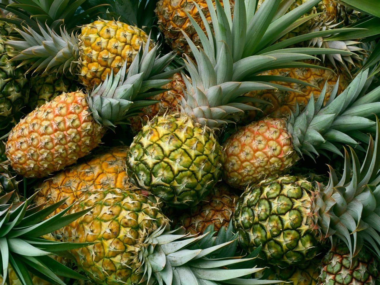 Kiril Mischeff Product Pineapple