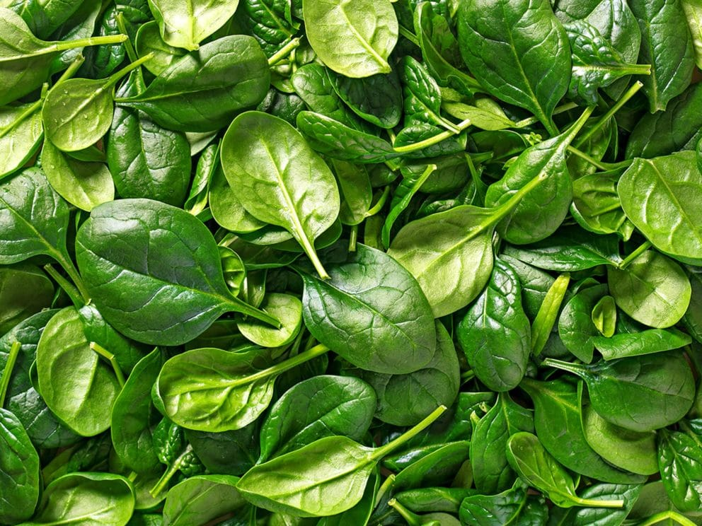 Kiril Mischeff Product Spinach
