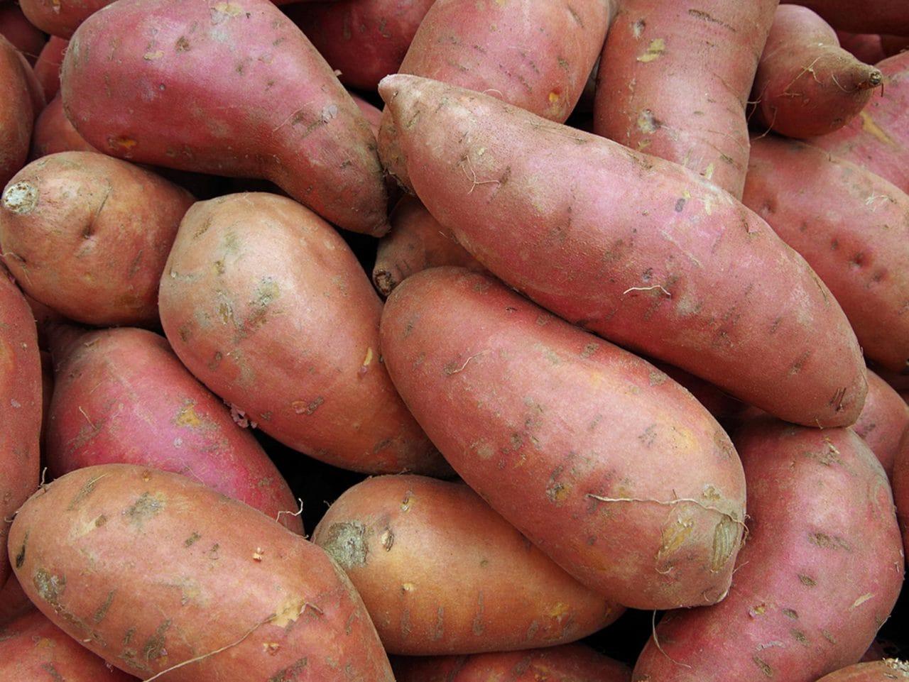 Kiril Mischeff Product Sweet Potato